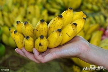 有人说糖友不能吃香蕉,有的又说可以,糖友到底能不能吃香蕉?