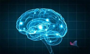 闭眼单脚站立是如何影响健康的?