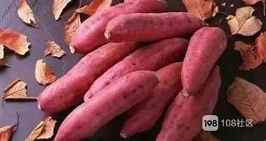 秋冬吃红薯有什么好处,补气养颜功效多