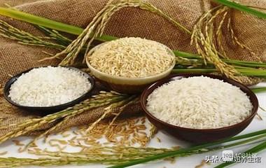 粗粮、细粮这两种主食,哪种更适合中老年人,有利于健康呢?