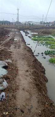 少埋一根排水管,一下雨赵马菜地变水塘,菜都淹死了