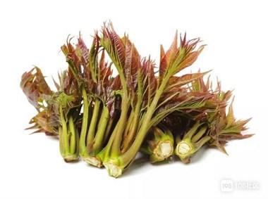 """春天3种""""芽菜"""",别错过!养肝益肾营养高,现在吃正合适"""