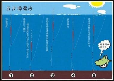 钓好鱼调钓是关键,教你如何?调出清晰的漂相