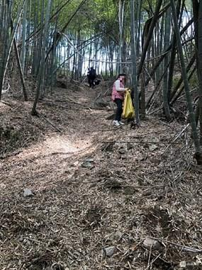 嵊州山上挖笋,女子眼角膜被竹枝扎破!已紧急送医