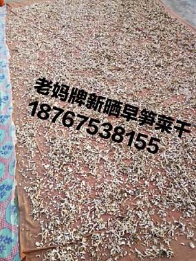 【转卖】刚晒好早笋菜干25元一斤