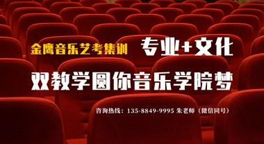 上浙江音乐学院,合肥比较好的艺考培训机构