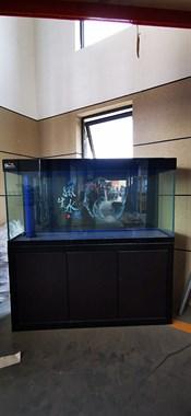 【转卖】水族箱 鱼缸 家庭观赏缸,全新转让