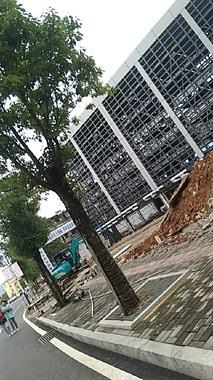 视频实拍!景德镇这个智慧停车场即将投入使用 看着就高大上