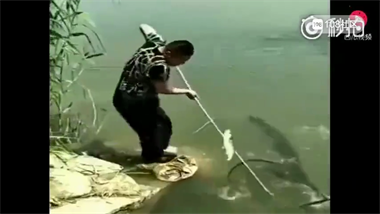 笑死!诸暨喜欢捞鱼都看看,也许这就是你们的下场