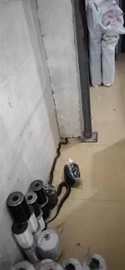 车间里来了条巨大的蛇!蛇头高高昂起,还在不停扭动