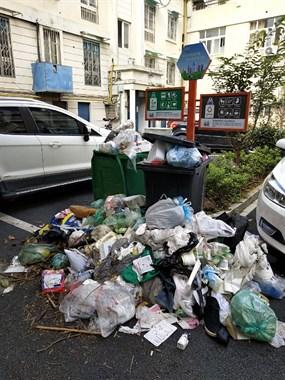 被这一幕吓到!武康某小区垃圾半个月无人清理,全倒在路上