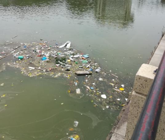 大水过后,长桥河里全是死鱼、垃圾成山!边上还有好多摆摊…