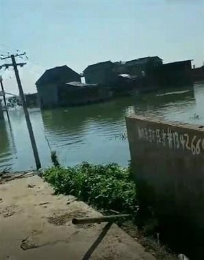 现场实拍!大水过去半个月 鄱阳这地房屋仍然泡在水里!