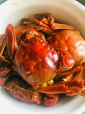 夏天就该这样吃!河蟹、凉拌芦笋、老妈种的南瓜藤...