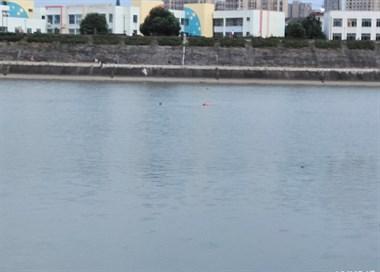 心真大!东桥好几个人在游泳,有人穿救生衣在边上劝说