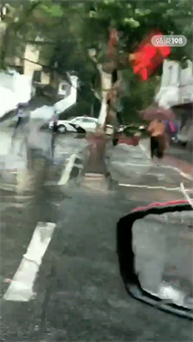 刚刚!电闪雷鸣 景德镇多处大树被刮倒!数辆车子遭殃