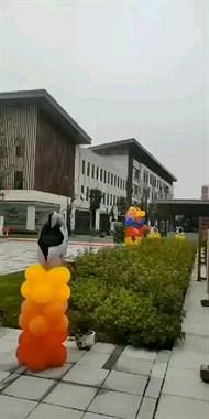 霸气!陶阳学校铺红毯、立气球拱门 迎接新生!