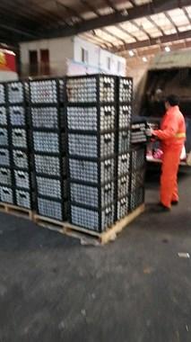 水果批发市场几十箱苹果被倒垃圾车!老板亏大了