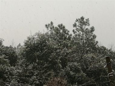 2021年第一场雪,瑞雪兆丰年