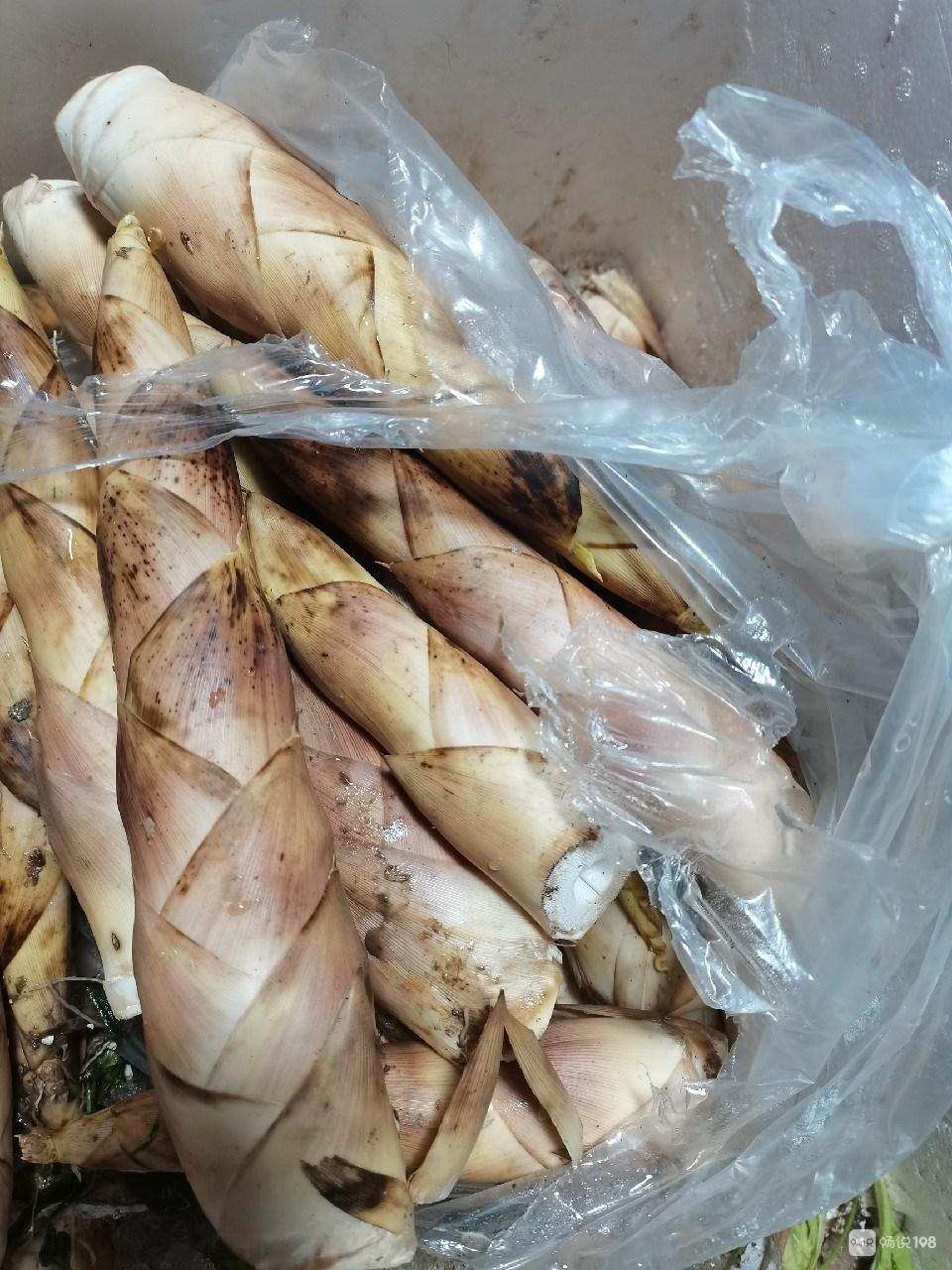 豆芽1元1斤,雷笋10元左右,蔬菜马上要降价了吧?