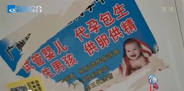 一次20万!绍兴学生群惊现代孕广告