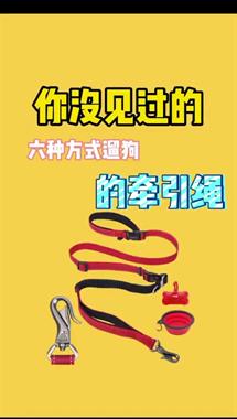 延平人注意!遛狗拴绳入法,5月1日起施行