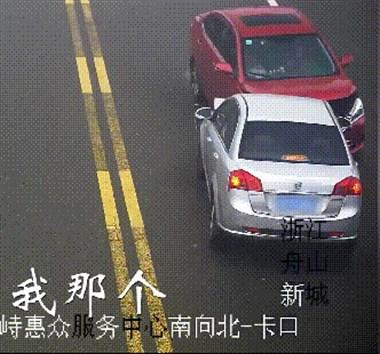 两车相撞 原来是猫跳到了方向盘