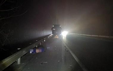 甬金高速应急车道上停车,男子下车被撞飞,不幸身亡!