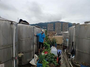 家电水池水塔消毒清洗
