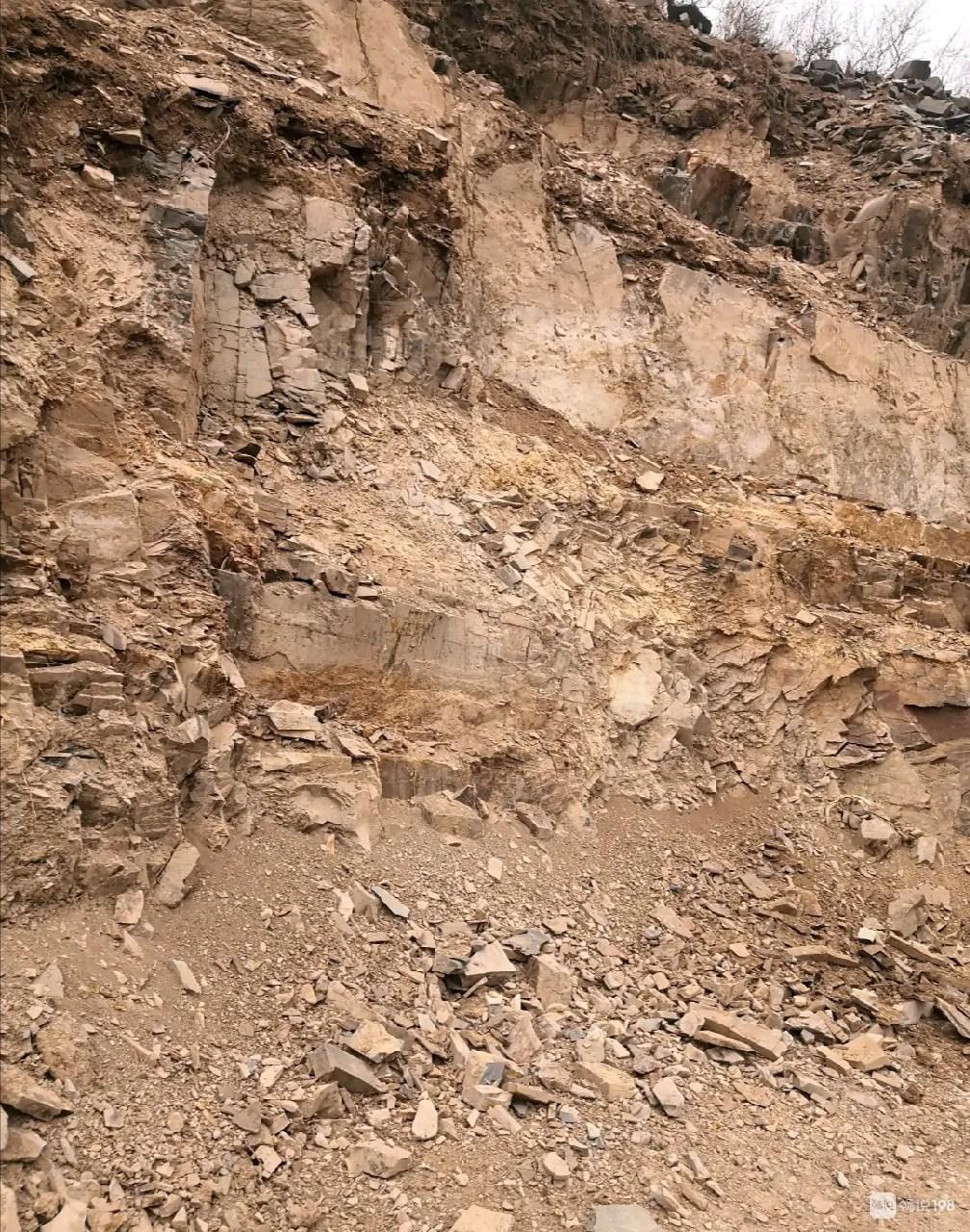 这是化石吗?镜岭山上发现,里面有植物一样纹路!