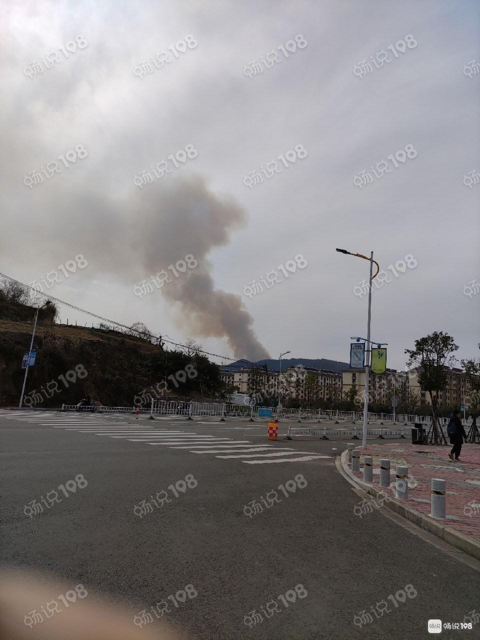 急人!定海白泉镇山上着火了,远处看一大片火焰