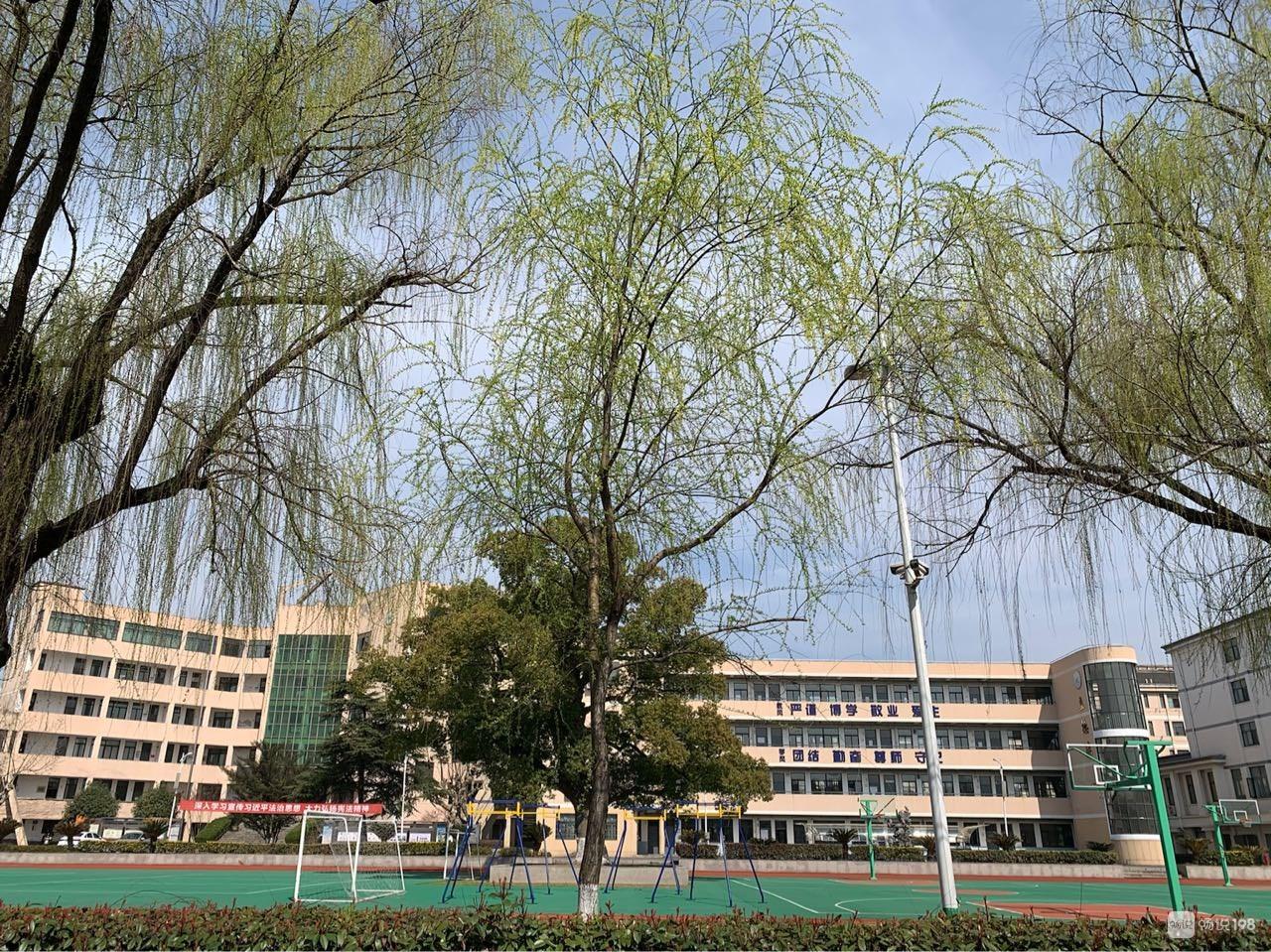 绍兴这学校前面的河景很美,你去逛过吗?