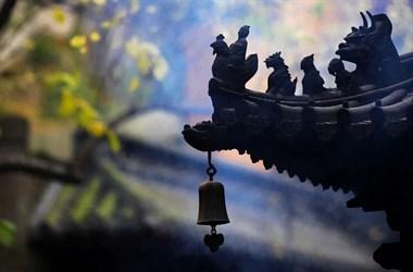 新昌这里的女神节活动,门票半价还送花!时间就在…