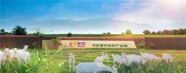 红星美羚乳业硬核产品力——羚恩贝贝羊奶粉赢得好口碑