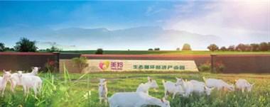红星美羚乳业:唯有健康与营养不可辜负~