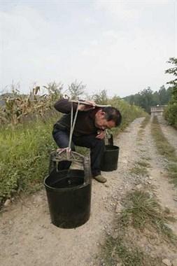求助!买了两只大水桶,做挑水用的扁担选择哪种木头好?