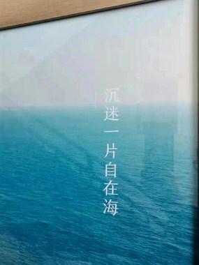 旅游投资热门首先,51钜惠特价红盘,一万一平精装海景房,