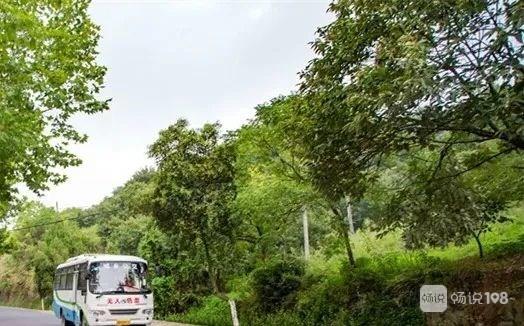 新昌城乡公交将临时调整,持续1个多月!涉及澄潭、后岱山…