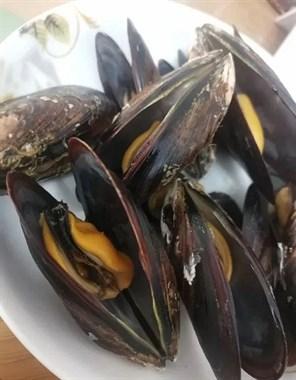 已致多人中毒!紧急提醒:这种常见海鲜近期勿食