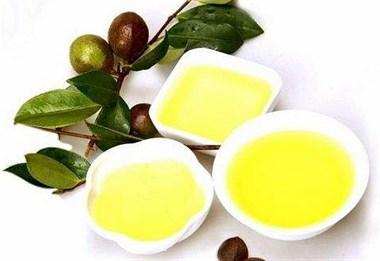 茶油能和其它食用油掺着食用吗?