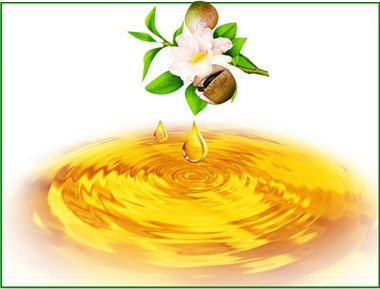 除了治胃病,茶油还有以下功效