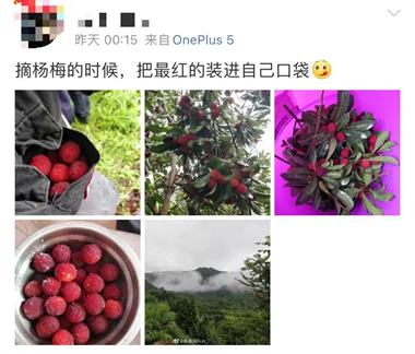 紧急提醒!最近很多天台人都在做这事,台州已有人受重伤
