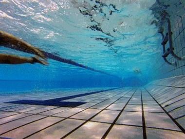 暑假学游泳要开班喽。