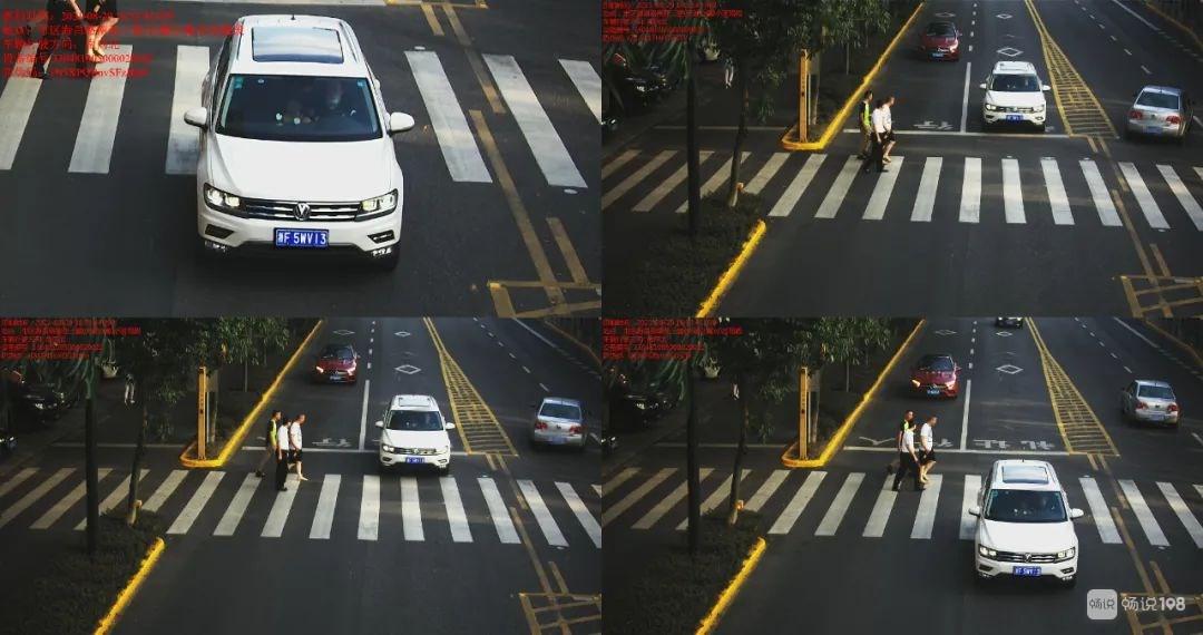 高清曝光:浙FP597*、浙A5E3A*…海宁这十辆车斑马线前未礼让!