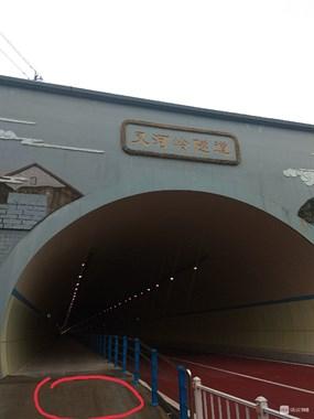 好惨!舟山这隧道出口好多人摔跟头,骑电瓶车千万注意!