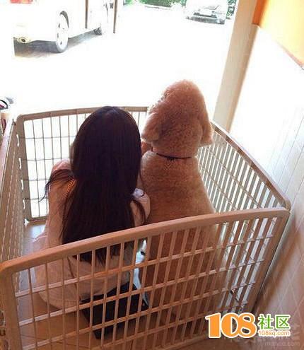 哪买的宠物啊,我要想养
