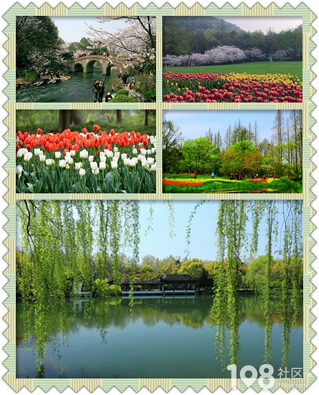 随手拍春天 留住杭州春之美