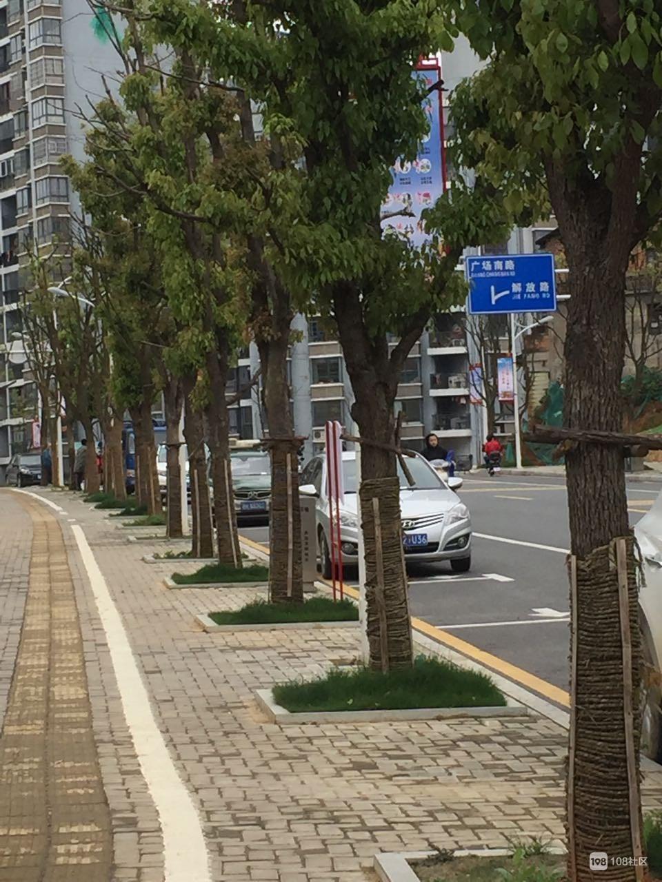 原来瓷都这条路停车有时间限制!边上一排车被贴罚单