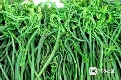 央视曝这种野菜致癌?目前正大量上市,德清人也会吃