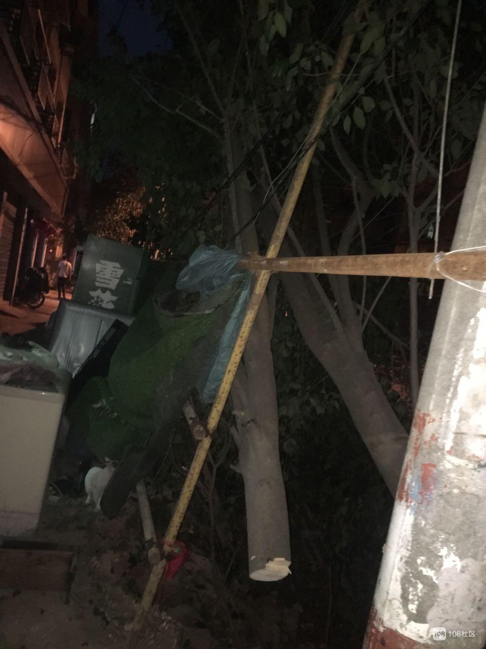 私营城居民全傻眼!树被腰斩一半还挂电线上,伐树工却走了?